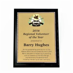 Regional Volunteer of the Year Trophy - Polished Brass Plate